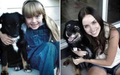 ペット小さかった頃と今の画像