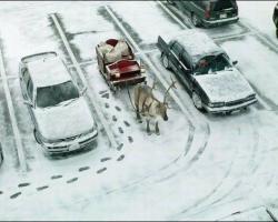 ちょっと笑えるクリスマスの写真