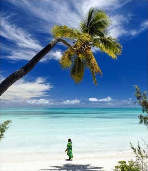 ニューカレドニア(仏領)の写真