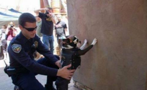 世界の「警察官という仕事」が分かる写真