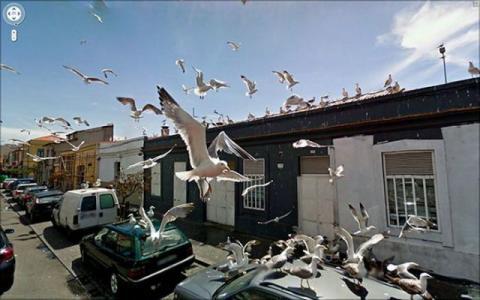 グーグルストリートビューで見かけた珍しい風景の写真
