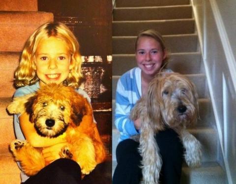 ペットと人の成長記録の写真
