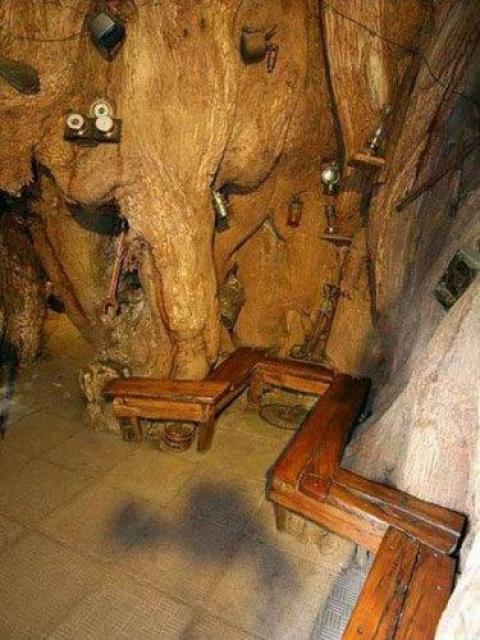 「バオバブの木」は、自然の生み出した不思議だと思える写真