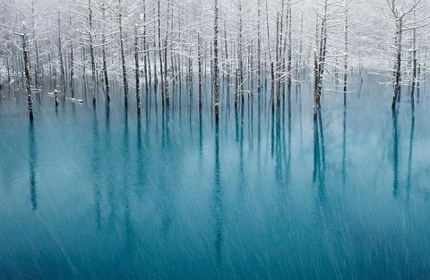 冬を感じる事ができる写真